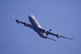 リンリンさんが、中部国際空港で撮影したルフトハンザドイツ航空 A340-313Xの航空フォト(飛行機 写真・画像)