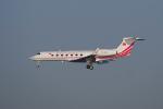 リンリンさんが、中部国際空港で撮影したトルコ政府 G500/G550 (G-V)の航空フォト(飛行機 写真・画像)
