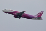 徳兵衛さんが、関西国際空港で撮影したピーチ A320-214の航空フォト(飛行機 写真・画像)