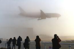 成田国際空港 - Narita International Airport [NRT/RJAA]で撮影されたエアロ・ロジック - AeroLogic [BOX]の航空機写真