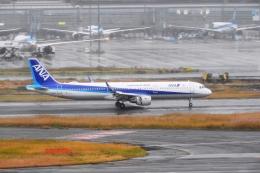 timeさんが、羽田空港で撮影した全日空 A321-211の航空フォト(飛行機 写真・画像)