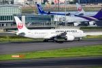 timeさんが、羽田空港で撮影した日本航空 787-8 Dreamlinerの航空フォト(飛行機 写真・画像)
