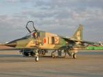 スカルショットさんが、築城基地で撮影した航空自衛隊 F-1の航空フォト(飛行機 写真・画像)