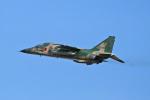 スカルショットさんが、新田原基地で撮影した航空自衛隊 F-1の航空フォト(飛行機 写真・画像)