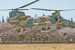 スカルショットさんが、熊谷基地で撮影した航空自衛隊 CH-47Jの航空フォト(飛行機 写真・画像)