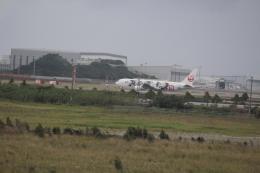 7915さんが、那覇空港で撮影した日本航空 767-346/ERの航空フォト(飛行機 写真・画像)