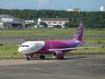 バンチャンさんが、宮崎空港で撮影したピーチ A320-214の航空フォト(飛行機 写真・画像)