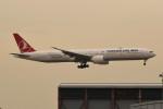 kuro2059さんが、香港国際空港で撮影したターキッシュ・エアラインズ 777-3F2/ERの航空フォト(飛行機 写真・画像)