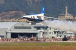 スカルショットさんが、岐阜基地で撮影した航空自衛隊 T-4の航空フォト(飛行機 写真・画像)