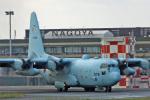 スカルショットさんが、名古屋飛行場で撮影した航空自衛隊 C-130H Herculesの航空フォト(飛行機 写真・画像)