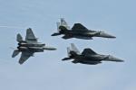 スカルショットさんが、札幌飛行場で撮影した航空自衛隊 F-15J Eagleの航空フォト(飛行機 写真・画像)