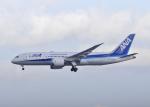 リンリンさんが、成田国際空港で撮影した全日空 787-8 Dreamlinerの航空フォト(飛行機 写真・画像)