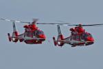 スカルショットさんが、下総航空基地で撮影した千葉市消防航空隊 AS365N3 Dauphin 2の航空フォト(飛行機 写真・画像)