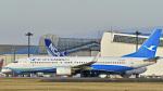 パンダさんが、成田国際空港で撮影した厦門航空 737-86Nの航空フォト(飛行機 写真・画像)