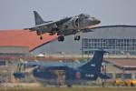 スカルショットさんが、岩国空港で撮影したアメリカ海兵隊 AV-8B(R) Harrier II+の航空フォト(飛行機 写真・画像)