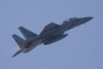 かずまっくすさんが、新田原基地で撮影した航空自衛隊 F-15DJ Eagleの航空フォト(飛行機 写真・画像)