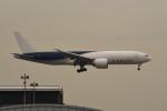 kuro2059さんが、香港国際空港で撮影したサザン・エア 777-F16の航空フォト(飛行機 写真・画像)