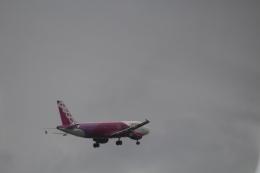 7915さんが、那覇空港で撮影したピーチ A320-214の航空フォト(飛行機 写真・画像)