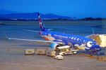 ちゃぽんさんが、静岡空港で撮影した中国聯合航空 737-8HXの航空フォト(飛行機 写真・画像)