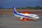 ちゃぽんさんが、鹿児島空港で撮影した全日空 737-881の航空フォト(飛行機 写真・画像)