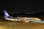 だいまる。さんが、岡山空港で撮影した全日空 737-8ALの航空フォト(飛行機 写真・画像)