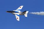 non-nonさんが、新田原基地で撮影した航空自衛隊 T-4の航空フォト(飛行機 写真・画像)