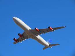 さんぜんさんが、成田国際空港で撮影したスカンジナビア航空 A340-313Xの航空フォト(飛行機 写真・画像)