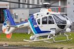 まんぼ しりうすさんが、東京ヘリポートで撮影したオールニッポンヘリコプター EC135T2の航空フォト(飛行機 写真・画像)