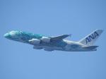 kayさんが、ダニエル・K・イノウエ国際空港で撮影した全日空 A380-841の航空フォト(飛行機 写真・画像)
