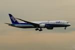 こだしさんが、羽田空港で撮影した全日空 787-9の航空フォト(飛行機 写真・画像)