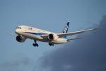 E-75さんが、函館空港で撮影した全日空 787-9の航空フォト(飛行機 写真・画像)
