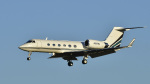 パンダさんが、成田国際空港で撮影したMGA SPA LLC G-IVの航空フォト(飛行機 写真・画像)