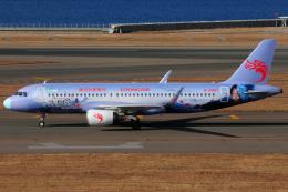 きんめいさんが、中部国際空港で撮影した長竜航空 A320-214の航空フォト(飛行機 写真・画像)