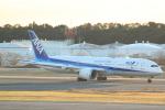 cassiopeiaさんが、成田国際空港で撮影した全日空 787-9の航空フォト(飛行機 写真・画像)