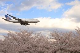 Hiro-hiroさんが、成田国際空港で撮影したユナイテッド航空 747-422の航空フォト(飛行機 写真・画像)