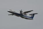 kuro2059さんが、新潟空港で撮影したANAウイングス DHC-8-402Q Dash 8の航空フォト(飛行機 写真・画像)