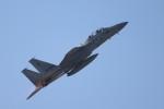 ゆう改めてさんが、新田原基地で撮影した航空自衛隊 F-15DJ Eagleの航空フォト(飛行機 写真・画像)