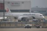 チェリーさんが、成田国際空港で撮影した日本航空 787-8 Dreamlinerの航空フォト(飛行機 写真・画像)