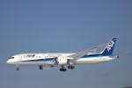 syo12さんが、函館空港で撮影した全日空 787-9の航空フォト(飛行機 写真・画像)