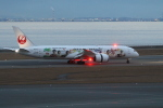 撮り空ひでさんが、中部国際空港で撮影した日本航空 787-8 Dreamlinerの航空フォト(飛行機 写真・画像)