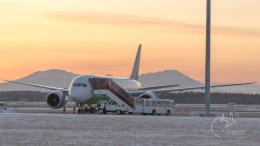 うみBOSEさんが、新千歳空港で撮影したウズベキスタン航空 787-8 Dreamlinerの航空フォト(飛行機 写真・画像)