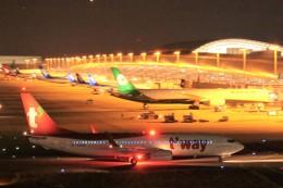ぷぅぷぅまるさんが、関西国際空港で撮影したティーウェイ航空 737-8KNの航空フォト(飛行機 写真・画像)