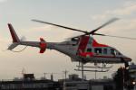 banshee02さんが、東京ヘリポートで撮影した朝日航洋 430の航空フォト(飛行機 写真・画像)