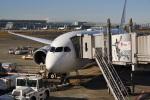Cスマイルさんが、羽田空港で撮影した日本航空 787-8 Dreamlinerの航空フォト(飛行機 写真・画像)