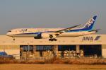 Co-pilootjeさんが、成田国際空港で撮影した全日空 787-9の航空フォト(飛行機 写真・画像)