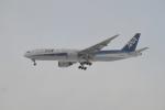 E-75さんが、函館空港で撮影した全日空 777-281の航空フォト(飛行機 写真・画像)