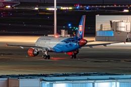 Ariesさんが、羽田空港で撮影したスロバキア政府 A319-115CJの航空フォト(飛行機 写真・画像)