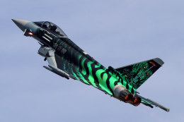 chrisshoさんが、ベルリン・シェーネフェルト空港で撮影したドイツ空軍 EF-2000 Typhoonの航空フォト(飛行機 写真・画像)