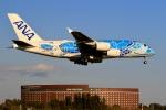 ☆ライダーさんが、成田国際空港で撮影した全日空 A380-841の航空フォト(飛行機 写真・画像)