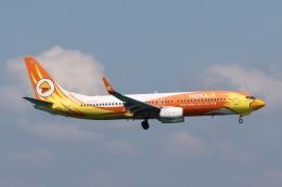 U.Tamadaさんが、プーケット国際空港で撮影したノックエア 737-88Lの航空フォト(飛行機 写真・画像)